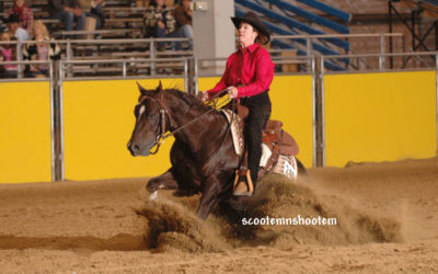 Reining Essential 5 – Troubleshooting Whoa