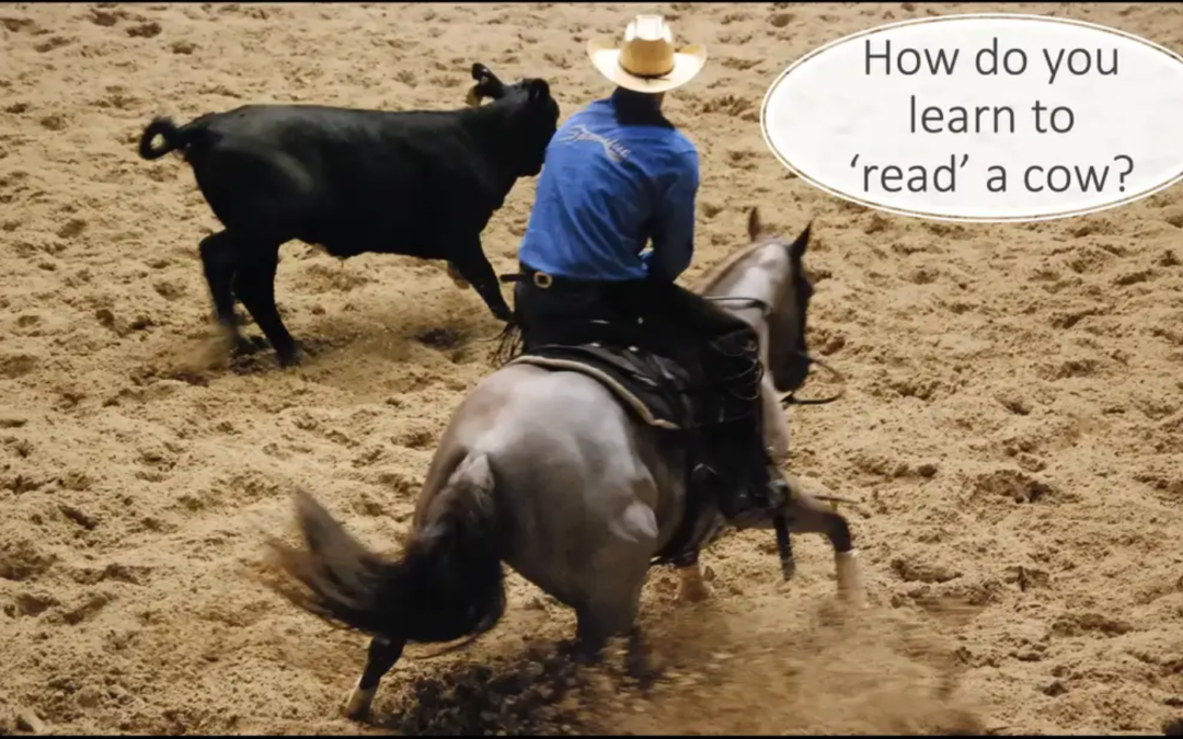 How do you learn to read a cow?