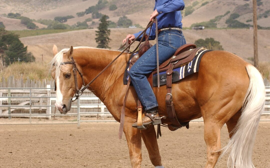 Essential 7 Pivoting on the Hind End